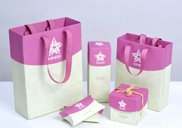 Thiet ke in tui giay Shopping Bag kraft paper bag
